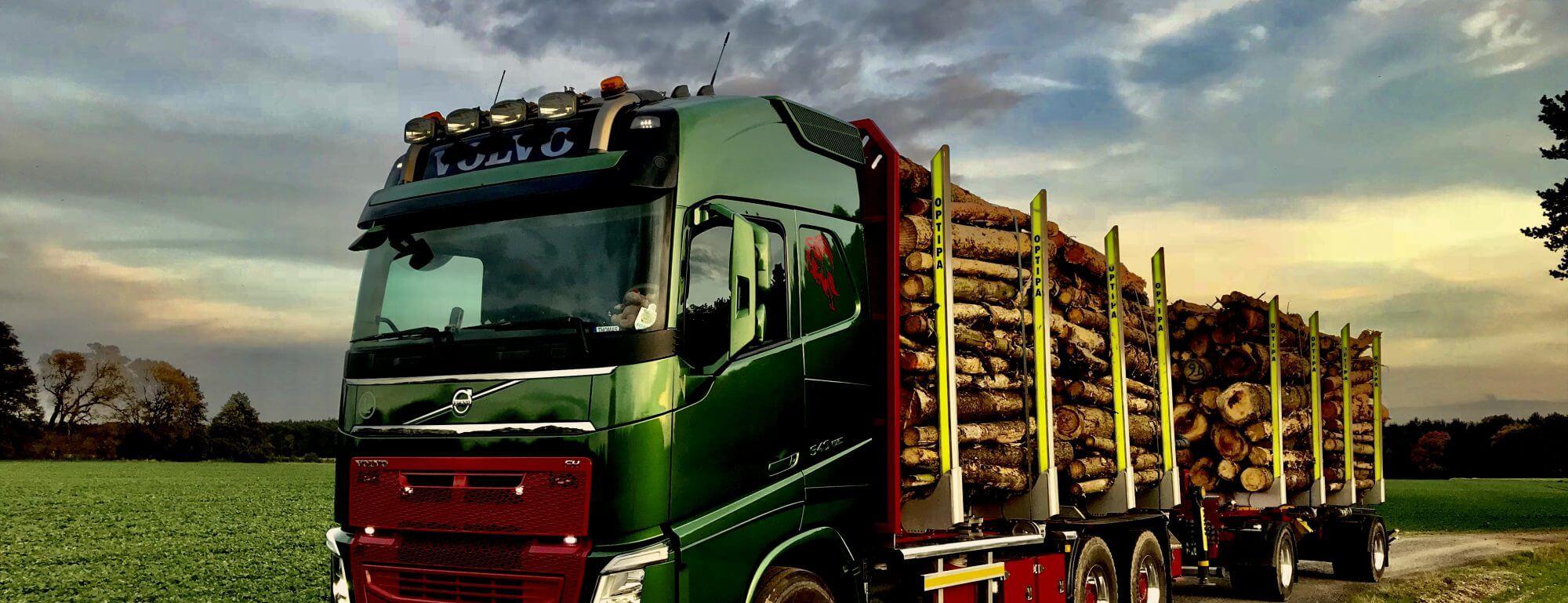 LKW Pavic | Holztransporter Forst Kran Kipper Baustoff